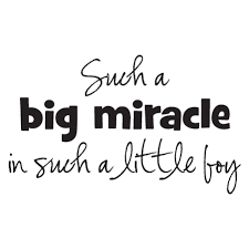Little Boy Quotes Mesmerizing Big Miracle Little Boy Wall Quotes™ Decal WallQuotes