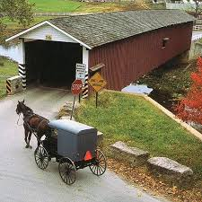 best amish culture images amish country amish amish buggy and covered bridge
