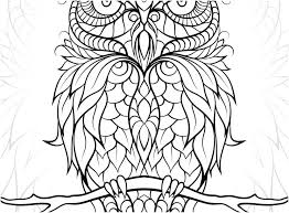 Baby Owl Coloring Pages Owls Coloring Pages Baby Owl Coloring Pages