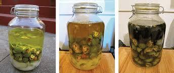 Znalezione obrazy dla zapytania Liquor GREEN NUTS