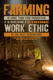 best images about information graphics facts farm work ethic erin ehnle