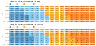Body Fat Charts Heat Map Charts Anychart Gallery Anychart
