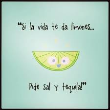 Beautiful Funny Quotes On Life Best of Meaning When Life Gives You Lemons Ask For Salt And Tequila