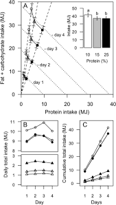 Lean Humans Increase Energy Consumption On A Lower Perc Open I