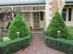 Small Picture Services Foliage Focus Adelaide landscape and garden designers