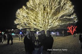 Draper Lights Tree Of Life Tree Of Life Utahs Adventure Family