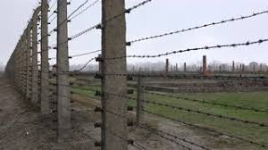 barbed wire fence concentration camp. Birkenau Barracks Ruins Through Barbed Wire - Auschwitz Concentration Camp Fence O