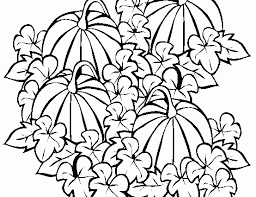 Pumpkin Patch Coloring Page Funycoloring