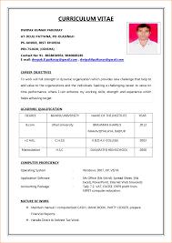 Resume Format For Job Sample Of Biodata For Job Application