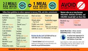 Athletic Food Chart Mercury In Fish What Should I Eat The Fisheries Blog