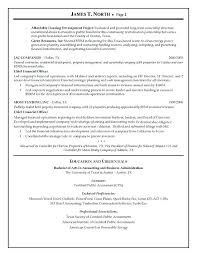 Example Of Finance Resume Financial Consultant Resume Sample Finance