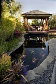 koi pond lighting ideas. interesting pond in a small yard the pond grew to fit koi to koi pond lighting ideas