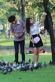 a photographic essay of bangkok life people at work rest and  a young couple he feeds the birds while she photographs herself typical