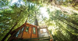 Luxurious tree house Luxury Spend Weekend Glamping In Luxury Treehouse Nestled Among The Sequoia Forest Cnbccom 10 Of The Best Glamping Experiences In The Us