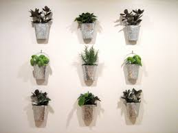 Indoor Kitchen Gardens Guest Project Make A Kitchen Garden Wall