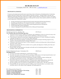 Marketing Resume Template Sales Marketing Resume Sample Page Template Vice President 62