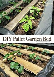 looking for more gardening projects you will love