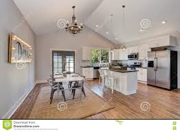Kitchen Cabinets To Ceiling enchanting 20 kitchen cabinets vaulted ceiling decorating 1704 by xevi.us