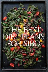 Sibo Diet Chart The Best Sibo Diets And Lifestyle Changes For Preventing Relapse