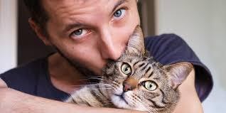 """Képtalálat a következőre: """"pasi és cica fotó"""""""