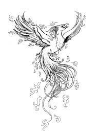 Drawings Of Phoenix Pheonix Drawing At Getdrawings Com Free For Personal Use Pheonix