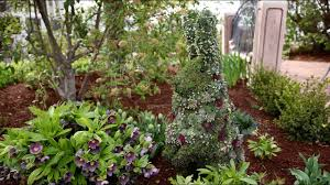 succulent topiary bunny garden answer