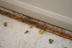 carpet nail strips. carpet stripscarpet tack strip for wood bargain outlet nail strips 2