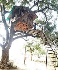 Image Jungle Tree House Built With Steps Wikipedia Tree House Wikipedia