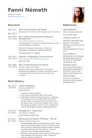 Asesor De Ventas Ejemplo De Curriculum Base De Datos De Visualcv