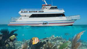 Glass bottom boat trips