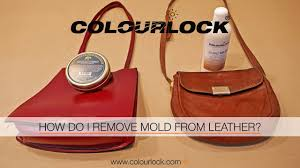mold on leather