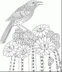 Free Spring Coloring Pages For Kids With Free Printable Adult
