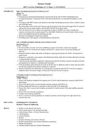 Insurance Consultant Resume Samples Velvet Jobs