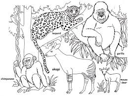 Small Picture Jungle Coloring Pages Printable Mkumca Org 1192 Bestofcoloringcom