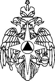 Форма титульного листа вкр на примере дипломной работы