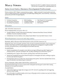 Resume Examples Entry Level Enchanting EntryLevel Sales Resume Sample Monster