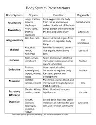 Human Body Systems Chart Organ System And Function Chart Bedowntowndaytona Com