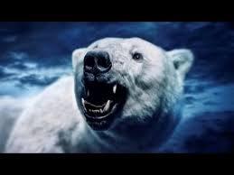 grolar bear size new hybrid bears monster size bear evidence documentary tv youtube