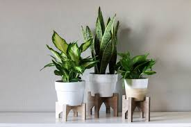 diy wooden plant stands on a cnc and a