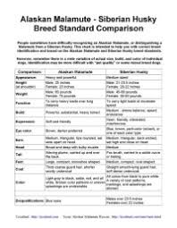 Siberian Husky Feeding Chart Puppy Working Dog Food