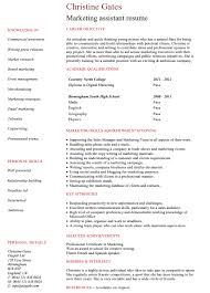 Marketing Assistant Resume Unique 60 Best Digital Marketing CV Examples Templates