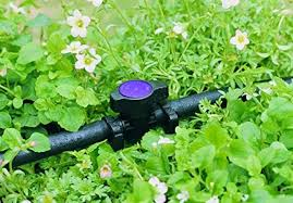garden irrigation systems. Simple Irrigation Ever Been Stood With A Hose Pipe Watering The Garden And Thought U201cThere  Must Be An Easier Wayu201d Weu0027ll Your Right There Is Much Way U2013 Iu0027ve  Inside Garden Irrigation Systems R
