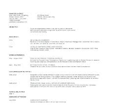 Professional Resume Template Word 2010 – Resume Sample Web