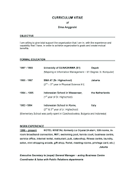 Example Of A Good Objective On A Resume Examples Of Objective On A Resume Objective Examples Objectives For