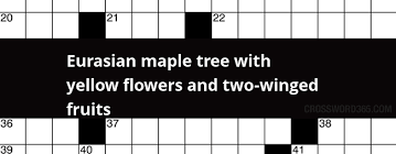 Thorny Problems What Is A Good Climbing Plant To Cover A Wall Wall Climbing Plants Crossword