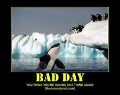 HAVING A BAD DAY..... on Pinterest | Bad Day, Bad Day Funny and ... via Relatably.com