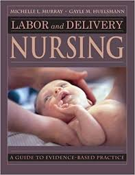 Labor And Delivery Nursing Guide To Evidence Based Practice