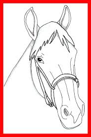 horse face coloring page. Interesting Horse Morgan Horse Coloring Pages Reward Face Page Stunning  For Realistic Head Ideas  On Horse Face Coloring Page E