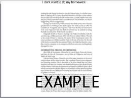 my school practice essay type