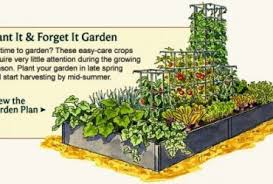 Small Picture Best Vegetable Garden Layout Gardening Ideas